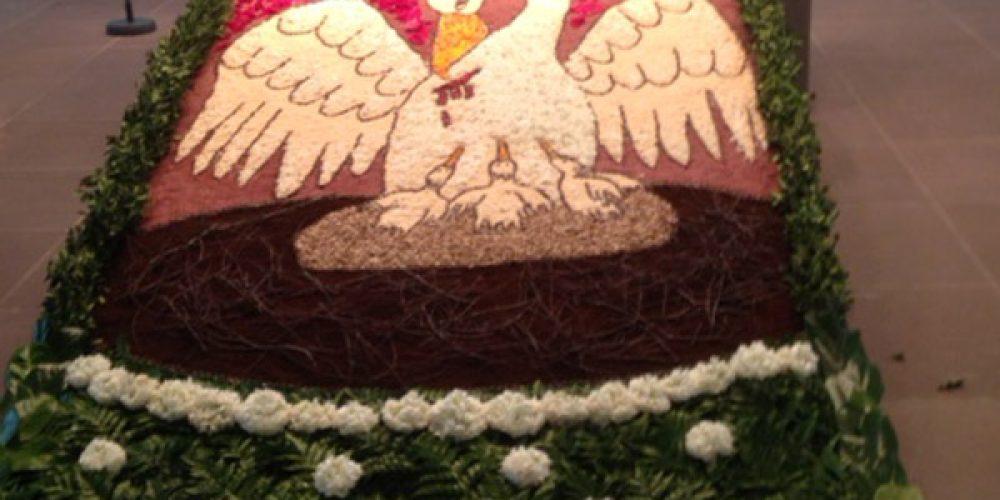 Blumenteppich ziert Stadtkirche